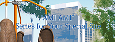 AMI AMI Series for Your Special Site